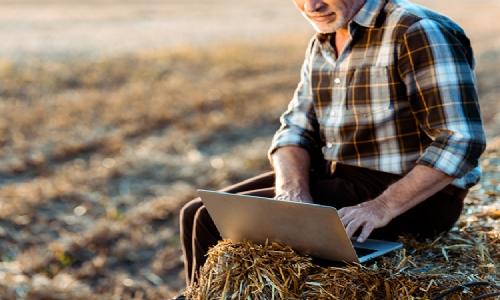 Tarım Alanında Ergonomik Riskler ve Kaldırma İşi