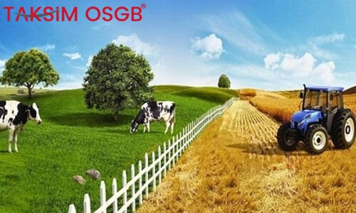Tarım Sektöründe İş Sağlığı ve Güvenliği Görev ve Sorumlulukları