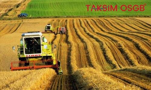 Tarımda İş Sağlığı ve Güvenliği Politikaları